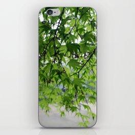 secret garden 24 iPhone Skin