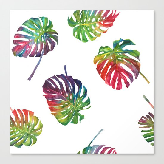 Tropical plant Canvas Print