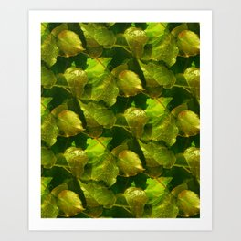 ivy pattern -03- Kunstdrucke