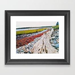 Beach Lines at Seawall Framed Art Print