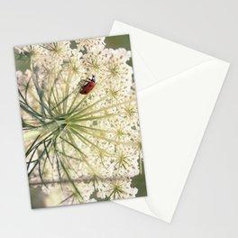 Lacybug Stationery Cards