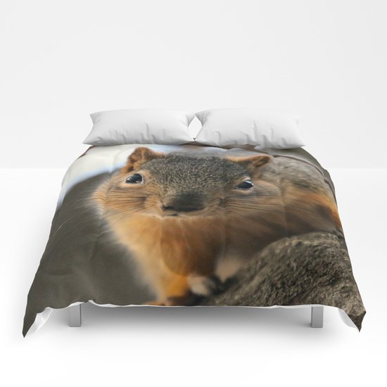 Too cute! Comforters