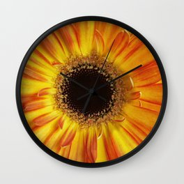 Orange Chrysanthemum Wall Clock