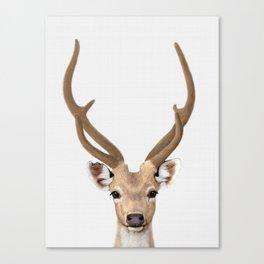 Deer print, Deer art, Animal prints, Nursery decor, Animal art, animals wall art Canvas Print