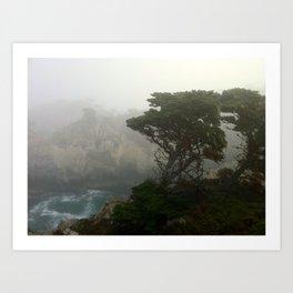Ocean front in Carmel, CA Art Print