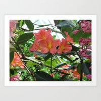 Cloud Forest flower Art Print