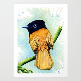 Little Brown Bird Art Print