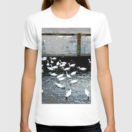 Swans in Berlin 2 T-shirt