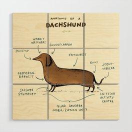 Anatomy of a Dachshund Wood Wall Art