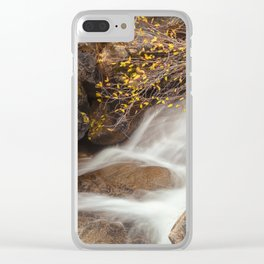 Cascade Clear iPhone Case