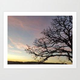 Subtle savanna sunset - Pheasant Branch Conservancy Art Print