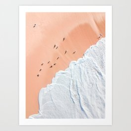 Birds and Ocean Art Print