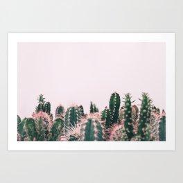 Pink Blush Cactus Art Print