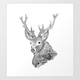 Forest Stag Art Print