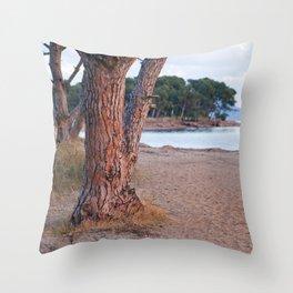 Salins Beach 8902  Throw Pillow