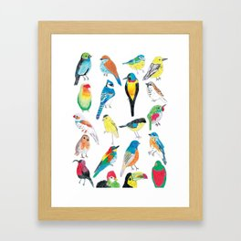 Bird Print Framed Art Print