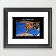 Yorkie - That Moment When You Realize You Just Lost the High Ground Framed Art Print
