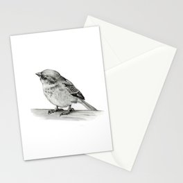 Small Bird in Pencil, Wildlife Art Stationery Cards