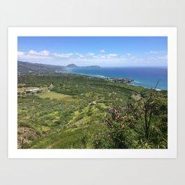 Hawaiian Shoreline Art Print