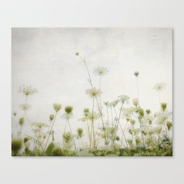 Lacey Canvas Print
