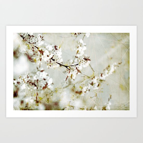 Spring 3  Art Print