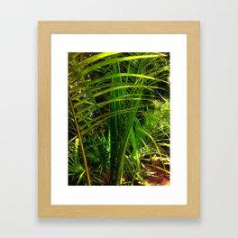 New Palm Frond Framed Art Print