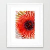 poppy Framed Art Prints featuring Poppy by Klara Acel