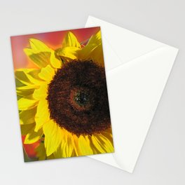 Digital Photography Stationery Cards