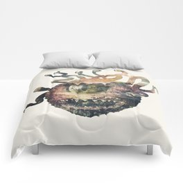Beholder Comforters