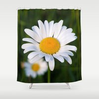 daisies Shower Curtains featuring Daisies by Rose Etiennette