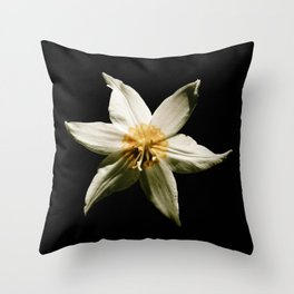 Honey and the Moon Throw Pillow