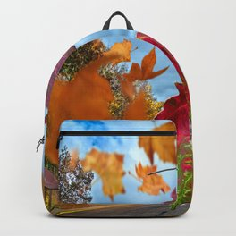 Winds of Change Backpack
