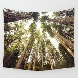 The Canopy Wall Tapestry