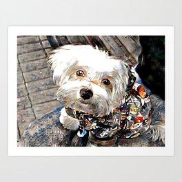 adorable little puppy Art Print