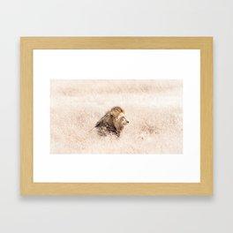 Nostalgic Lion Framed Art Print