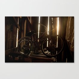 Old Pal Canvas Print