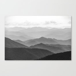 Forest Fade - Black and White Landscape Nature Photography Canvas Print