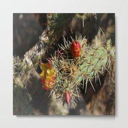 The Beauty Of The Desert Metal Print