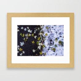 Fall Meets Winter Framed Art Print