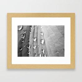 water droplets 3 Framed Art Print