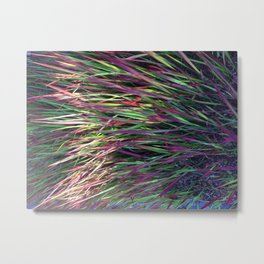 Indio Palm Metal Print