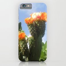 Blossoms in the Spring iPhone 6s Slim Case