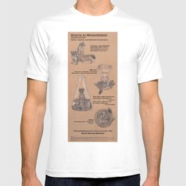 Stoats as Measurement T-shirt