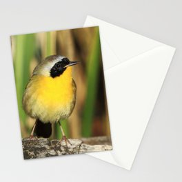 Common Yellowthroat Stationery Cards