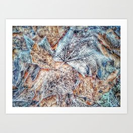winter leaves pattern Art Print