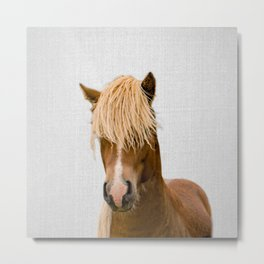Horse - Colorful Metal Print