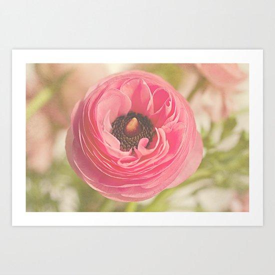 The Pretty Pink Ranunculus Art Print