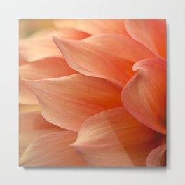 Gentle Petals Metal Print