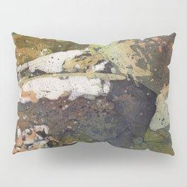 Fine art watercolor batik painting on rice paper of lionesses lying on sunny rocks at North Carolina Pillow Sham