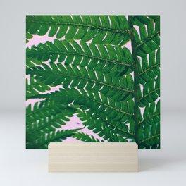 Fern Fronds Mini Art Print